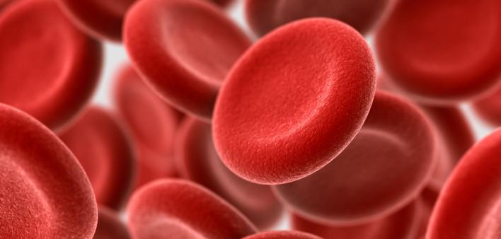 Hepatitis B Transmission and Risks - Hep