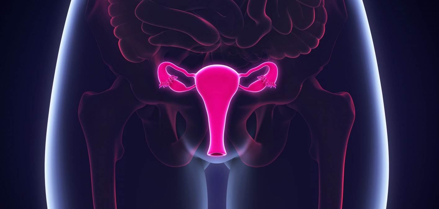 Scientists Identify Which Ovarian Cancer Patients Won T Benefit From Parp Inhibitors Cancer Health